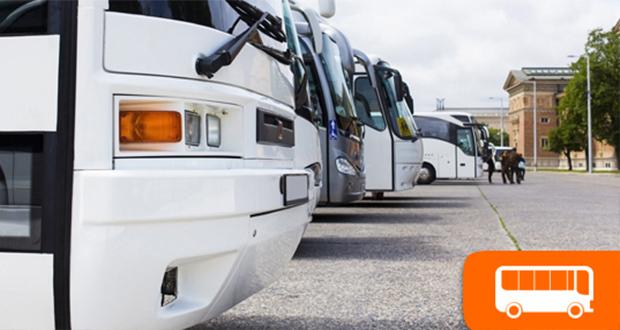 D'Agostino Tour, il noleggio autobus per i tuoi spostamenti